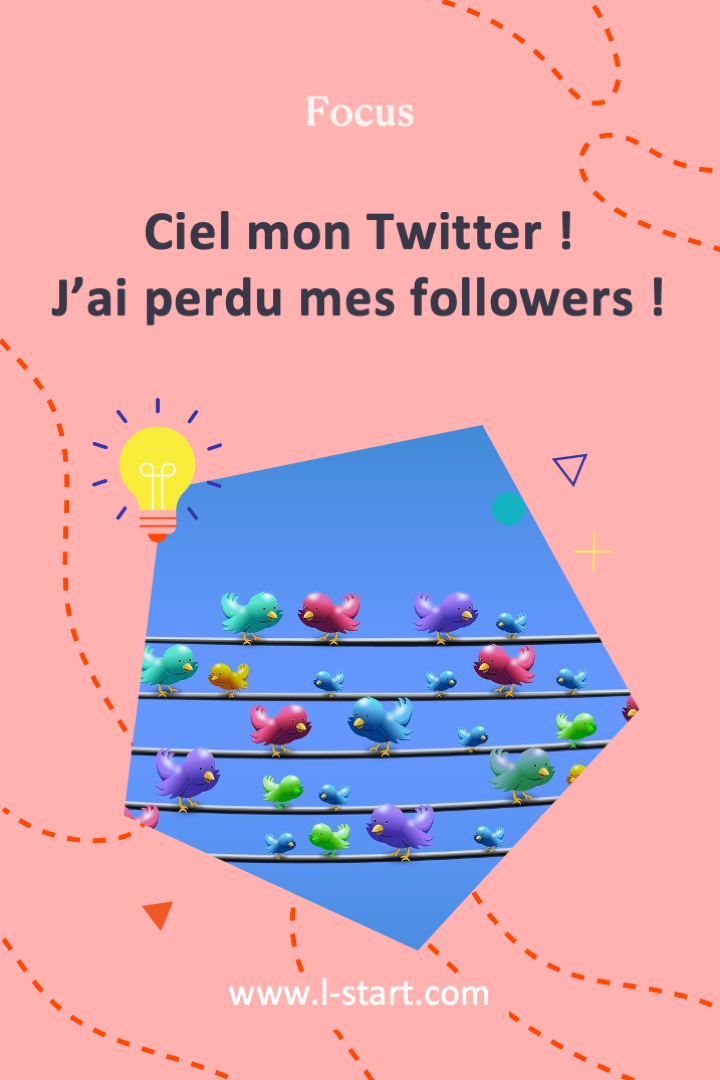 l-start-focus-5--ciel-mon-twitter-jai-perdu-mes-followers-2